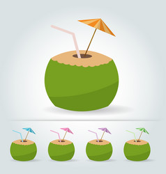 fresh drinking coconut with a straw cocktail vector image