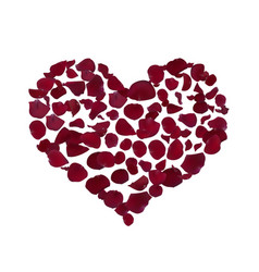 Heart shape burgundy vector