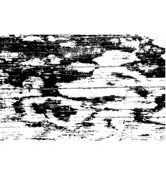 wood grunge texture natural wooden isolated vector image