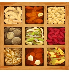 Nuts collection assorted vector