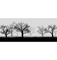 Forest in the dark mist trees silhouettes vector