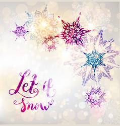 fairy winter snowflakes vector image