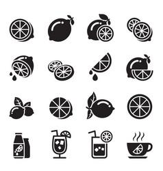 lemon icons vector image vector image