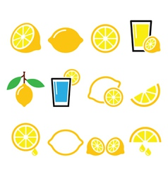 Lemon lime - food icons set vector image