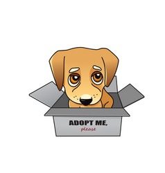 Dog adoption concept vector