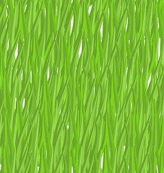 Green grass seamless pattern background natural vector image vector image