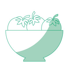 isolated vegetables bowl vector image