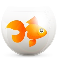 Lonely goldfish vector