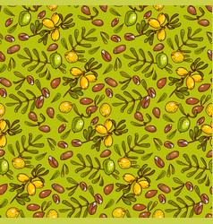 Seamless pattern argan oil vector
