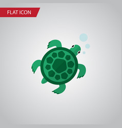 Isolated turtle flat icon tortoise element vector
