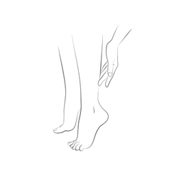 Beautiful womans female legs and hand vector image