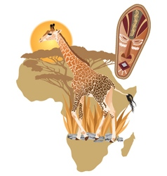 Africa Wildlife vector image