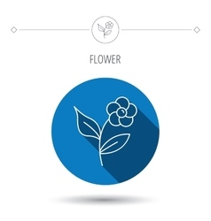 Flower with petals icon plant with leaves sign vector
