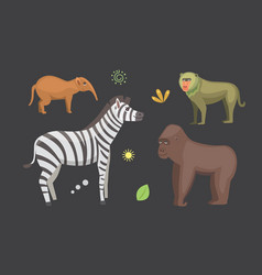african animals cartoon set zebra hyena vector image vector image