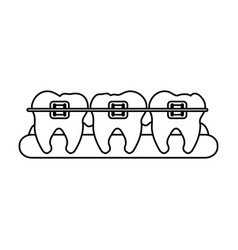 Molars with braces dental care related icon image vector