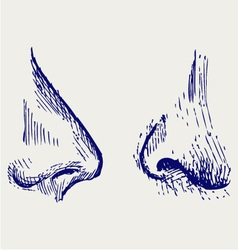 Nose vector image