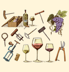 wine harvest products press grapes vineyards vector image vector image