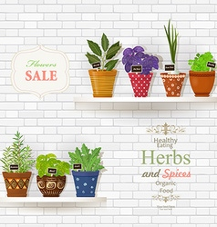 Herbs and spices planted in cute ceramic pots for vector