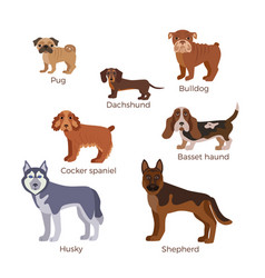 Dog breed silhouette vector