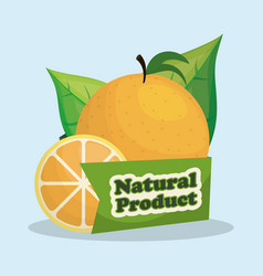 Orange natural product market label vector