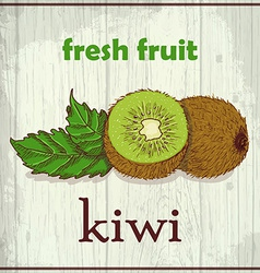 Hand drawing of kiwi fresh fruit sketch background vector