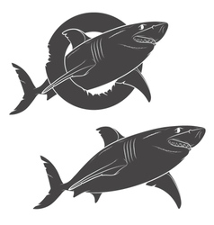 Drawing of a terrible shark isolated objects vector