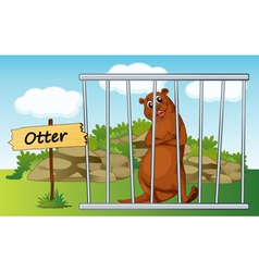 Cartoon zoo otter vector