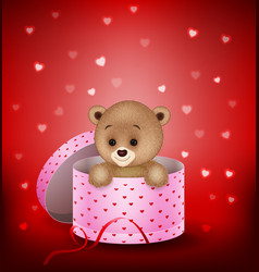 Cartoon small bear in a gift box vector