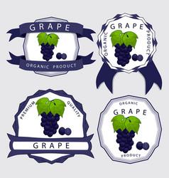 the blue grape vector image