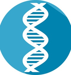 DNA Strand Icon vector image