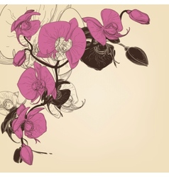 Orchid corner decoration greeting card vector