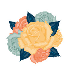bouquet roses isolated vector image vector image