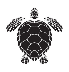 Graphic sea turtle vector