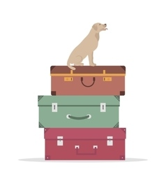 Travel Luggage and Dog vector image vector image