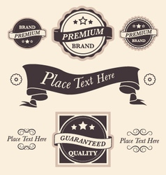 Vintage design elements badges and emblems set vector