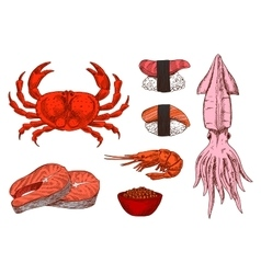 Fresh fish crustaceans caviar and sushi sketches vector