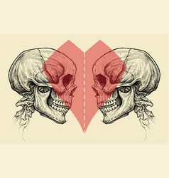 Couple skulls and heart symbol with scissors line vector