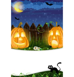Jack o lanterns and black cat vector