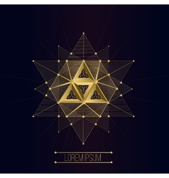 Sacred geometry forms vector