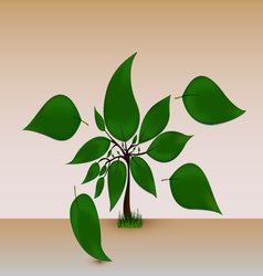 Tree with big leaves vector
