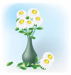 Chamomiles bouquet vector
