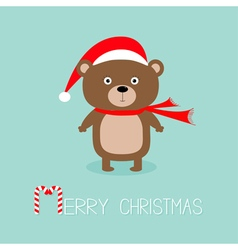 Brown bear in santa claus hat and scarf big eyes vector