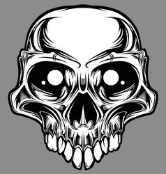 Custom skull vector vector