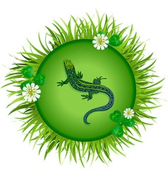 lizard on a meadow vector image