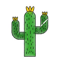 Cactus desert isolated icon vector