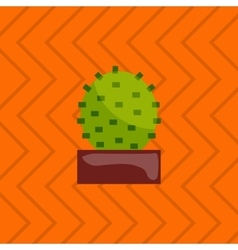 Houseplant indoor and office vector