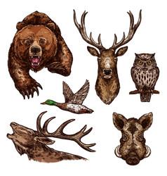 sketch icons of wild animals birds vector image vector image