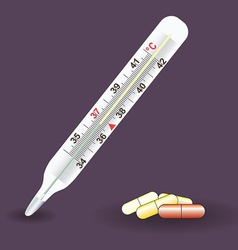 Thermometer medical Celsius vector image