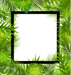 Beautiful border with tropical palm leaves vector