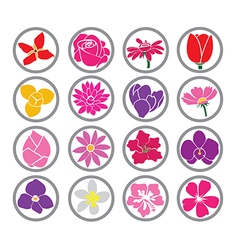 flowers four vector image
